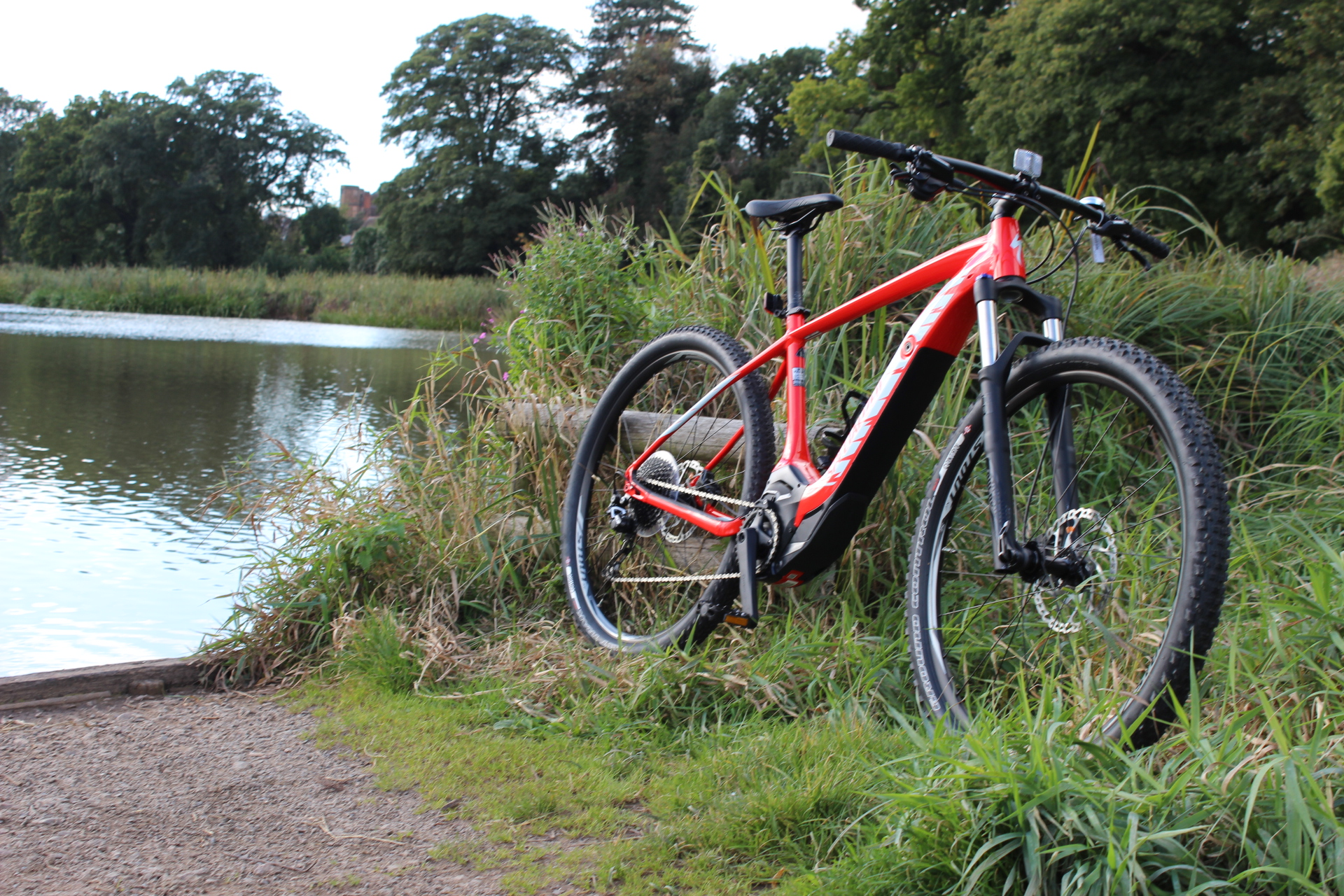 A bike resting against nature near a waterway