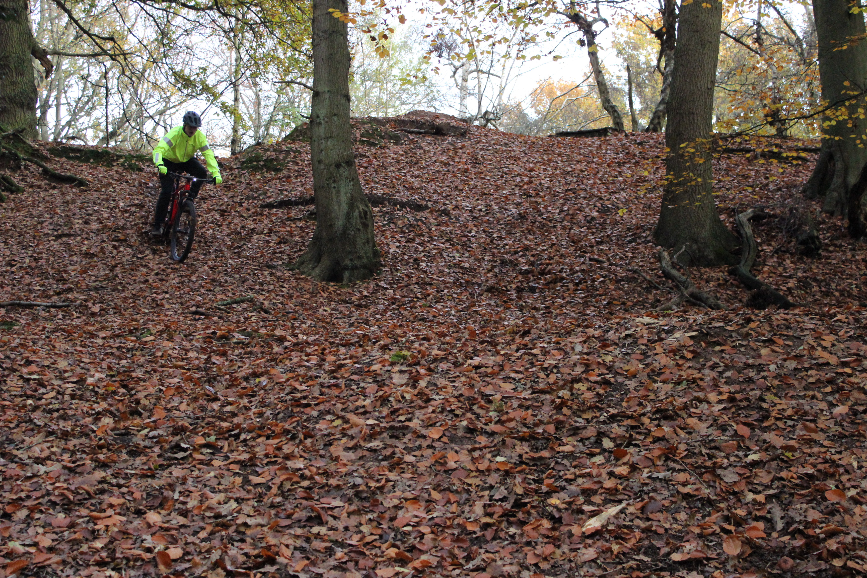 A bike rider wearing a high viz jacket riding downhill on a mountain bike in an autumnal wood